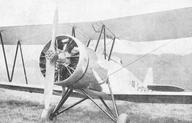The Avro Cadet is a popular training machine